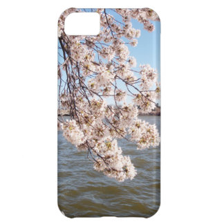 Caja de iPod de la flor de cerezo Funda Para iPhone 5C