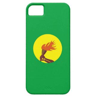 caja de la bandera de país de Zaire Congo iPhone 5 Carcasas
