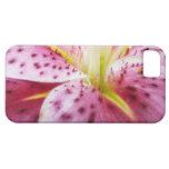 Caja de la casamata de Iphone 5 del lirio del Star iPhone 5 Case-Mate Cobertura