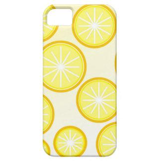 caja de la casamata de los naranjas funda para iPhone SE/5/5s