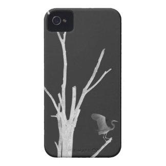 Caja de la casamata del iPhone 4/4S de la grúa Case-Mate iPhone 4 Carcasa