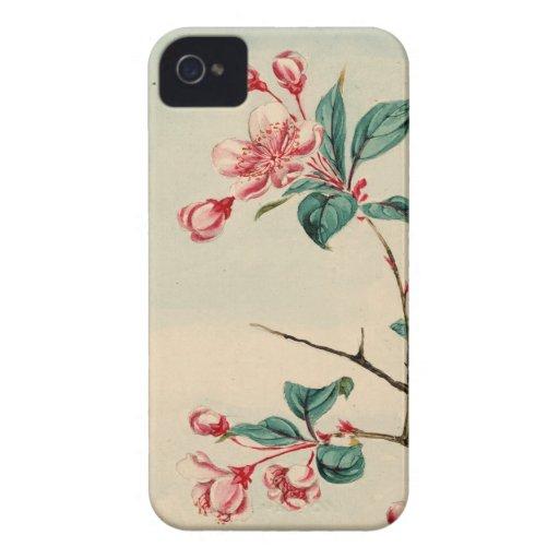 Caja de la casamata del iPhone 4 de los flores del iPhone 4 Funda