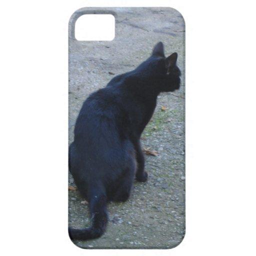 Caja de la casamata del iphone 5 del gato negro iPhone 5 funda