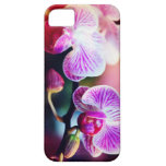 """Caja de la casamata """"dos orquídeas Colorized """" iPhone 5 Case-Mate Carcasa"""