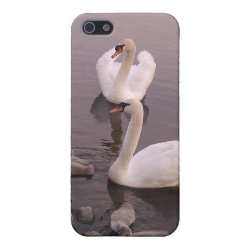 Caja de la familia del cisne iPhone 5 carcasa