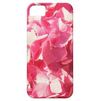 Caja de la flor de Piink iPhone 5 Funda