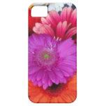 caja de la flor del iphone iPhone 5 Case-Mate protector
