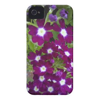 Caja de la flor del Lobelia para Blackberry Case-Mate iPhone 4 Funda
