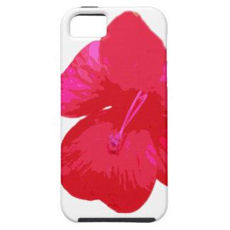 Caja de la flor iPhone 5 fundas