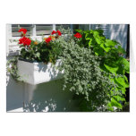 Caja de la flor tarjetón