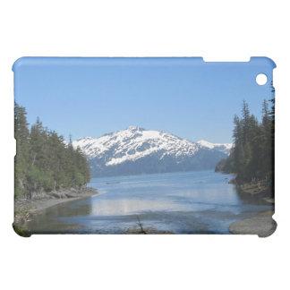 Caja de la mota de Alaska Ipad