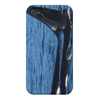 Caja de la mota de la familia de la orca iPhone 4/4S carcasa