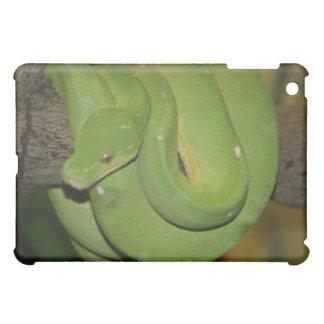 Caja de la mota de la serpiente