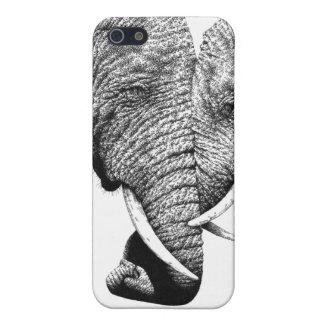 Caja de la mota de los elefantes africanos iPhone 5 funda