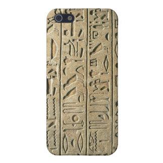 Caja de la mota de los Hieroglyphics iPhone 5 Funda