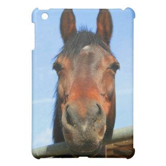 Caja de la mota del caballo de Brown