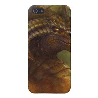Caja de la mota del dragón antiguo iPhone 5 carcasa