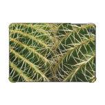 Caja de la mota del iPad del cactus