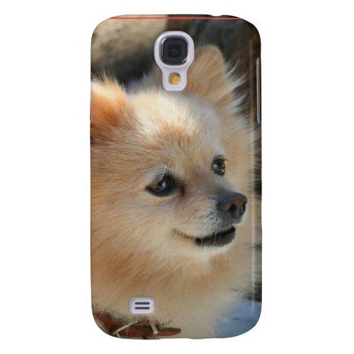 Caja de la mota del iphone del perro de Pomeranian