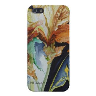 Caja de la mota del iris anaranjado y amarillo par iPhone 5 carcasa
