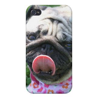 Caja de la mota del perro del barro amasado iPhone 4/4S funda