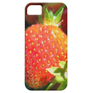 Caja de las bayas iPhone5 del verano Funda Para iPhone 5 Barely There