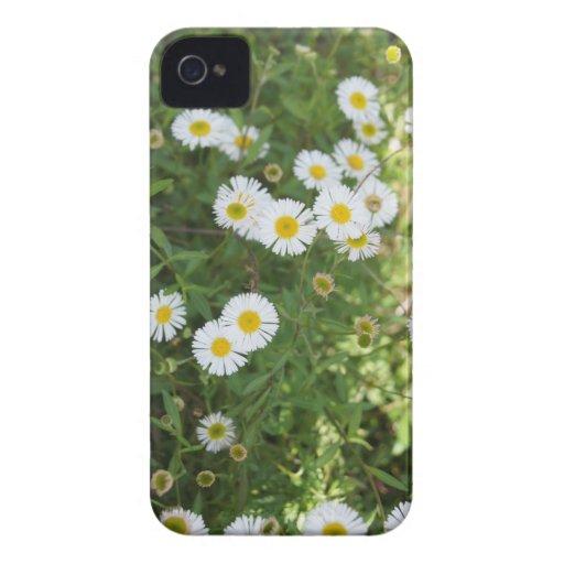 caja de las flores del iPhone 4/4S iPhone 4 Coberturas