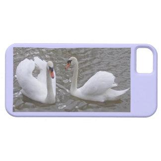 Caja de los pares Iphone5/5S del cisne iPhone 5 Fundas