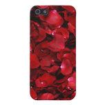 Caja de los pétalos color de rosa iPhone 5 carcasa