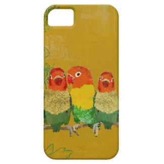 Caja de oro del iPhone de los pájaros del amor del iPhone 5 Funda