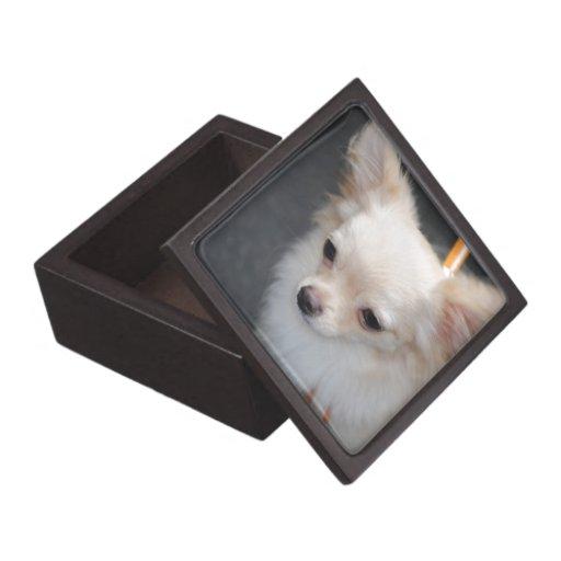 Caja de pelo largo de la chihuahua cajas de recuerdo de calidad