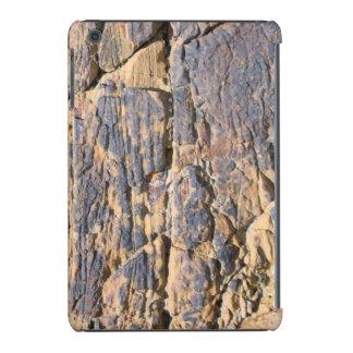 Caja de piedra del teléfono celular fundas de iPad mini