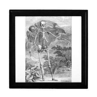 caja de regalo anatómica de los huesos joyero cuadrado grande