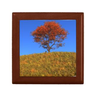 Caja de regalo clara del día del otoño joyero cuadrado pequeño
