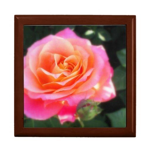 Caja de regalo color de rosa rosada de la foto de