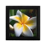 Caja de regalo con la flor tropical amarilla