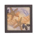 Caja de regalo con los Seashells Cajas De Regalo De Calidad