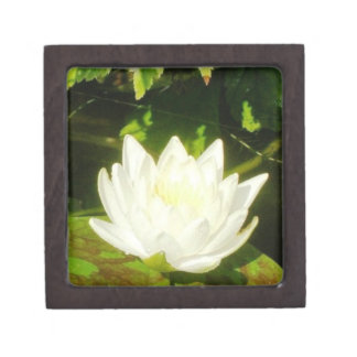 Caja de regalo de la flor de Lotus Caja De Recuerdo De Calidad