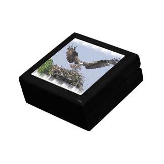 Caja de regalo de la jerarquía de Osprey