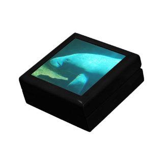 Caja de regalo de la natación del Manatee