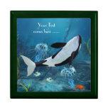 Caja de regalo de la orca II