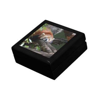 Caja de regalo de la panda roja el dormir joyero cuadrado pequeño