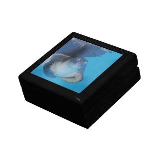 Caja de regalo de la tortuga de mar del bebé