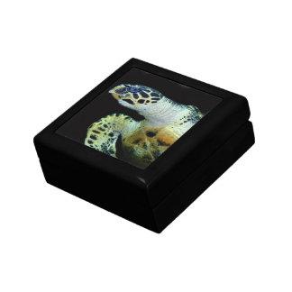 Caja de regalo de la tortuga de mar del Leatherbac