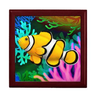 Caja de regalo de los pescados de Anenome del paya