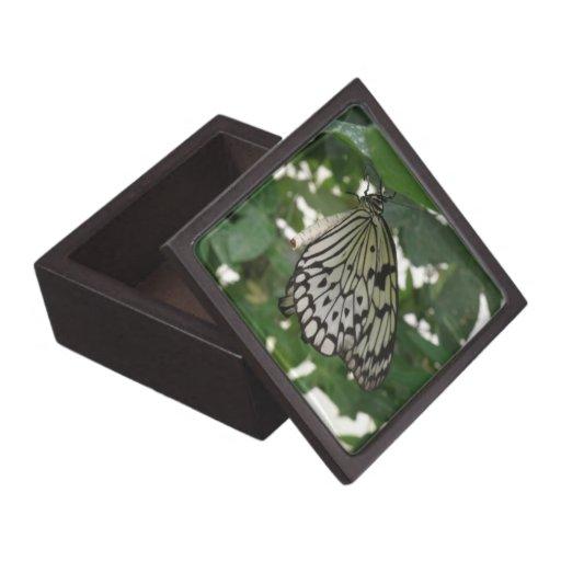Caja de regalo de papel tropical de la mariposa de cajas de regalo de calidad