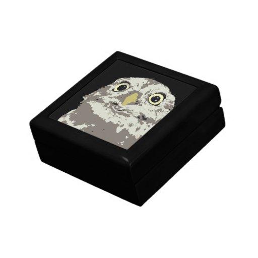 Caja de regalo de plata del búho (ascendentes cerc joyero cuadrado pequeño