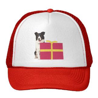 Caja de regalo del border collie gorras