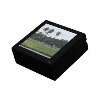 Caja de regalo del club de campo del golf