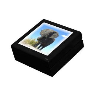 Caja de regalo del elefante africano joyero cuadrado pequeño
